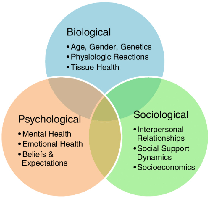 Perth Wellness Centre - The Biopsychosocial Model and Why it's Important in Our Practice copy